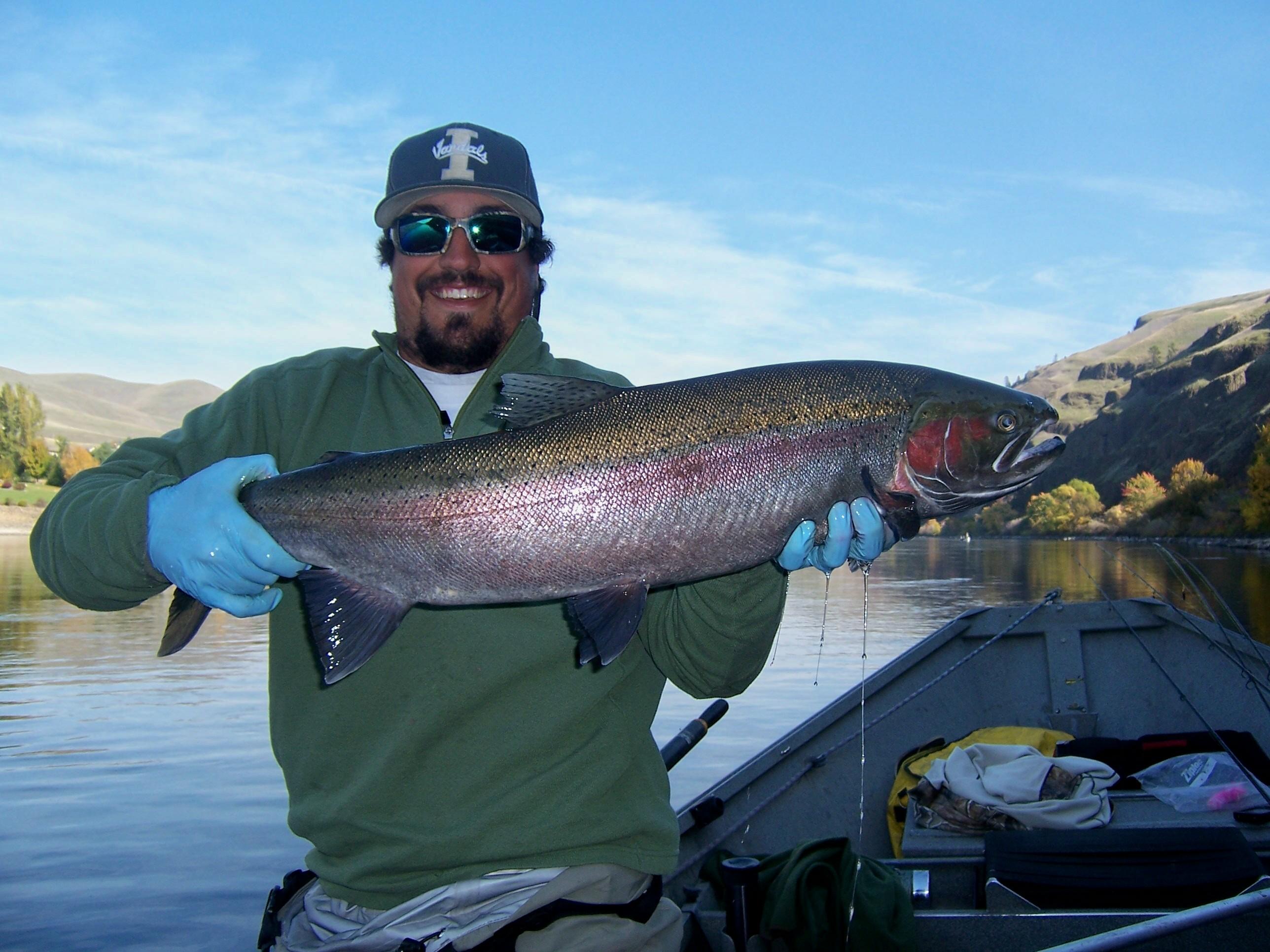 We Catch Big Fish